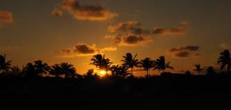 Tropical sunset panorama Royalty Free Stock Photos