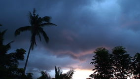 Tropical sunset in the Philippines. Cloud and trees during a colorful sunset stock video footage