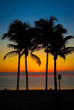 A Tropical sunset Royalty Free Stock Photos