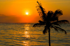 Tropical sunset scene Stock Photography