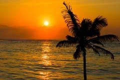 Tropical sunset scene Stock Photography