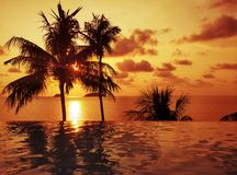 Tropical Sunset with Sea View and Palm Trees