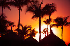 Tropical Sunset. With silhouetted palapa grass hut and palm trees Stock Images