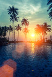 Tropical sunset and silhouettes of palm trees on sea beach. Nature. Royalty Free Stock Image