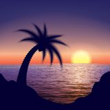 A Tropical Sunset, Sunrise. With Palm Tree Stock Photo
