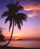 Tropical Sunset in thailand stock photo