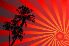 Tropical sunset vector illustration Stock Photos