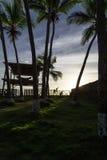 Tropical sunshine Stock Photos