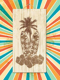 Tropical surfboard sign on star burst. Tropical Palm Trees and Surfboard Wooden Sign on a Star Burst Background stock illustration