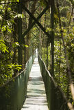 Tropical Suspension Bridge Stock Image