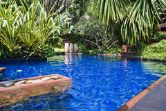 Tropical swimming pool. A tropical swimming pool asia Royalty Free Stock Photos