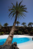 Tropical Swimming Pool. A tropical swimming pool, previously part of a five star luxury hotel in Lanzarote, now part of a touristic attraction called Jameos Del royalty free stock photos
