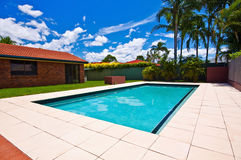 Tropical Swimming Pool. A low down view of a rectangular swimming pool Royalty Free Stock Image