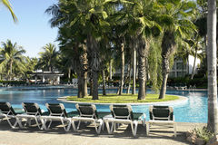 Tropical swimming pool. With deck chairs and palm trees royalty free stock image