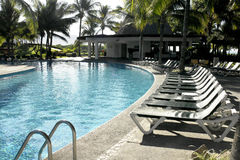 Tropical swimming pool. With deck chairs and palm trees stock photography
