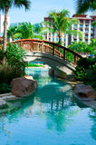 Tropical Swimming Pool. A tropical themed swimming pool with a bridge Stock Photography