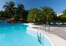 Tropical swimming pool Royalty Free Stock Image