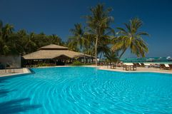 Tropical swimming pool. Meeru Atol, Maldives Stock Image