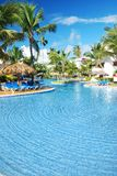 Tropical swimming pool. Swimming pool in the tropical hotel Royalty Free Stock Photography