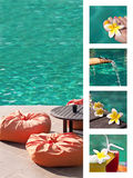 Tropical swimming pool. Concept collage Stock Image
