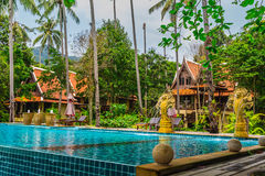 Tropical Swimming Pool in the jungle. Royalty Free Stock Photos
