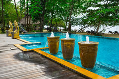 Tropical Swimming Pool in the jungle. Royalty Free Stock Images