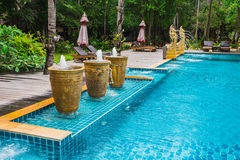 Tropical Swimming Pool in the jungle. Stock Photos