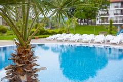 Tropical swimming pool. Stock Photos