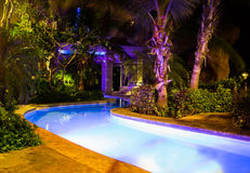 Tropical swimming pool Royalty Free Stock Images