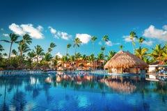 Tropical swimming pool in luxury resort, Punta Cana. Tropical swimming pool and palm trees in luxury resort Royalty Free Stock Photos