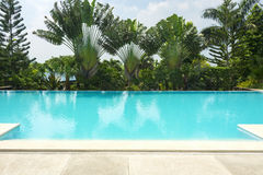 Tropical Swimming Pool Royalty Free Stock Photography
