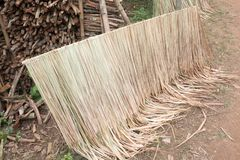 Tropical thatch roof Stock Image