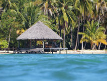 Tropical thatched hut Stock Photos