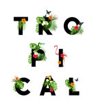 Tropical themed lettering type Stock Photo
