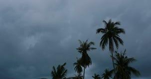 Tropical thunderstorm timelapse stock video