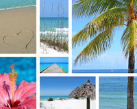 Tropical Time stock photography