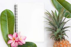 Tropical top view summer botanical concept still life pineapple. Notebook frame with plumeria frangipani leaves flower flat lay layout stock photography