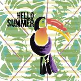 Tropical Toucan bird with grunge elements and ink drops. Wild ex. Otic animal. Text Hello Summer. Vector illustration Royalty Free Illustration
