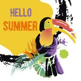 Tropical Toucan bird with grunge elements and ink drops. Wild ex. Otic animal. Text Hello Summer. Vector illustration Stock Illustration