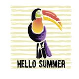 Tropical Toucan bird with grunge elements and ink drops. Wild ex. Otic animal. Text Hello Summer. Vector illustration Vector Illustration