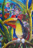 Tropical Toucan Stock Photo