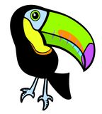 Tropical toucan Royalty Free Stock Photo