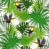 Tropical toucan pattern, cartoon style stock illustration