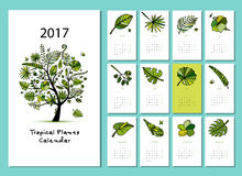 Tropical tree, calendar 2017 design. Vector illustration Royalty Free Stock Image