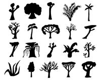 Tropical trees hand-drawn silhouettes. Black silhouettes of exotic plants. Royalty Free Stock Photos