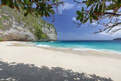 Tropical trees and shade. Tropical trees create shade at Kelingking Beach on Nusa Penida in Indonesia stock images