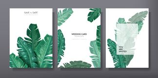 Tropical trendy greeting or invitation card template design, set of poster, flyer, brochure, cover, party advertisement. Dark green palm leaves in vector vector illustration