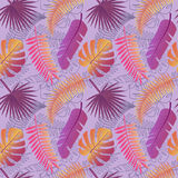 Tropical trendy pattern with exotic leaves. Tropical palm leaves, jungle leaves seamless vector floral pattern background. Perfect for wallpapers, web page Royalty Free Stock Images