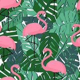 Tropical trendy seamless pattern with flamingos and palm leaves. Royalty Free Stock Photography