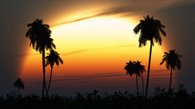 Tropical twilight sun highlights palm silhouettes. Huge sun at sunset or dawn shines at silhouettes of tropical vegetation and palm trees. Twilight at the end of
